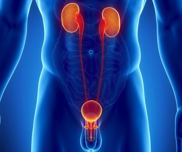 Инфекция мочевыводящих путей у мужчин