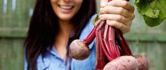 Woman beet